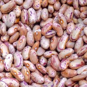receta alubias blw